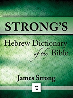 strongs hebrew dictionary